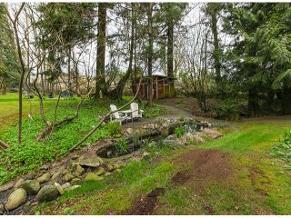 Photo 19: 30281 MERRYFIELD Avenue in Abbotsford: Bradner House for sale : MLS®# F1408278