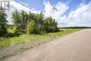 Photo 3: 565 Immigrant RD in Cape Tormentine: Vacant Land for sale : MLS®# M137540