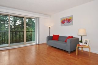"""Photo 2: 311 9847 MANCHESTER Drive in Burnaby: Cariboo Condo for sale in """"Barclay Woods"""" (Burnaby North)  : MLS®# R2317069"""