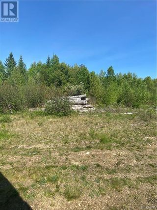 Photo 27: 74.62 Acres Route 127 in Bayside: Vacant Land for sale : MLS®# NB058351