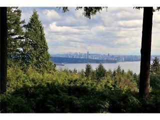 Photo 5: 4401 Woodpark Road in West Vancouver: Cypress Park Estates House for sale : MLS®# V1061125