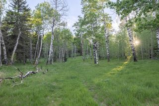 Photo 24: 231175 Bracken Road in Rural Rocky View County: Rural Rocky View MD Land for sale : MLS®# A1116621
