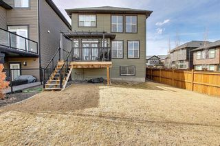 Photo 43: 107 Nolanshire Point NW in Calgary: Nolan Hill Detached for sale : MLS®# A1091457