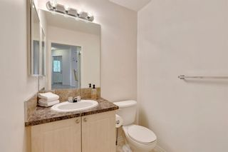 Photo 19: 18 Copperfield Crescent SE in Calgary: Copperfield Detached for sale : MLS®# A1141643