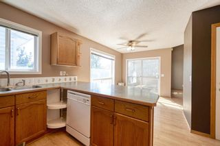 Photo 20: 172 ERIN MEADOW Way SE in Calgary: Erin Woods Detached for sale : MLS®# A1028932