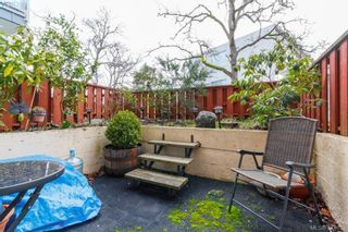 Photo 15: 206 1366 Hillside Ave in VICTORIA: Vi Oaklands Condo for sale (Victoria)  : MLS®# 751862