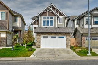 Photo 1: 32 SKYVIEW SPRINGS Gardens NE in Calgary: Skyview Ranch Detached for sale : MLS®# A1118652