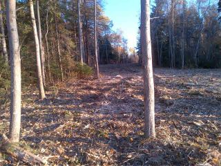 Photo 4: Lot 07-2 Shore Road in Lower Barneys River: 108-Rural Pictou County Vacant Land for sale (Northern Region)  : MLS®# 202104415