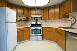 Photo 13: 147 RHATIGAN Road E in Edmonton: Zone 14 House for sale : MLS®# E4218545