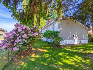 Photo 9: 3820 EARLMOND Avenue in Richmond: Seafair House for sale : MLS®# R2582825
