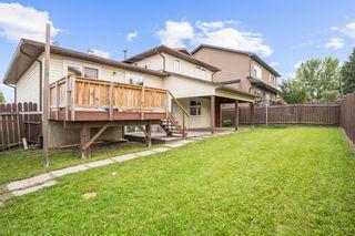 Photo 30: 4 Castlebury Way NE in Calgary: Castleridge Detached for sale : MLS®# A1146595