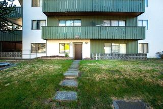"""Photo 19: 1441 W 70TH Avenue in Vancouver: Marpole Multi-Family Commercial for sale in """"Broadview Court"""" (Vancouver West)  : MLS®# C8038842"""