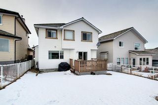 Photo 39: 144 Edgebrook Park NW in Calgary: Edgemont Detached for sale : MLS®# A1066773