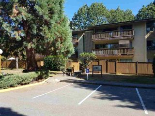 """Photo 1: 310 10061 150TH Street in Surrey: Guildford Condo for sale in """"forest manor"""" (North Surrey)  : MLS®# R2206129"""