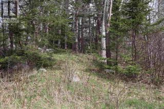 Photo 8: Lot St Catherines River Road in Port Joli: Vacant Land for sale : MLS®# 202111302