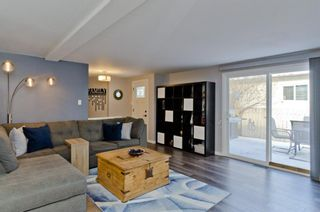 Photo 14: 231 BRENTWOOD Drive: Strathmore Detached for sale : MLS®# A1050439