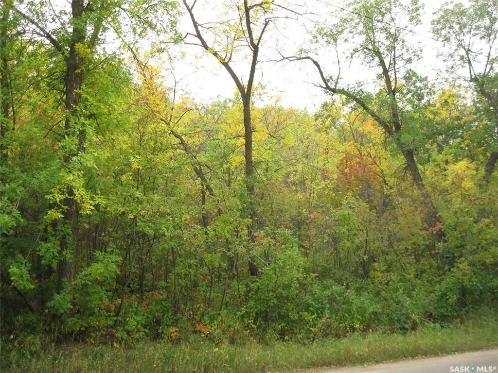 Main Photo: 9 and 11 Qu'Appelle Park in B-Say-Tah: Lot/Land for sale : MLS®# SK826743