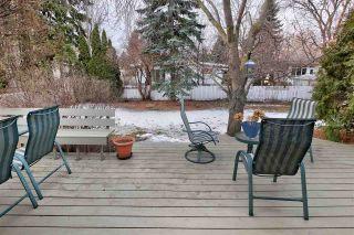 Photo 49: 10713 60 Avenue in Edmonton: Zone 15 House for sale : MLS®# E4234620