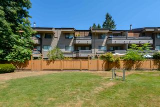 """Photo 4: 111 1195 PIPELINE Road in Coquitlam: New Horizons Condo for sale in """"DEERWOOD COURT"""" : MLS®# R2601284"""