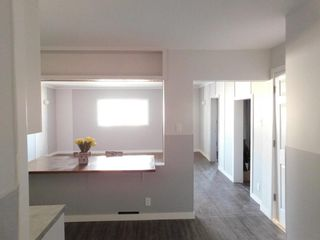 Photo 5: 398 Redwood Avenue in Winnipeg: North End Residential for sale (4A)  : MLS®# 202123191