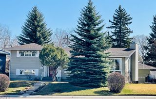 Main Photo: 111 Cherovan Drive in Calgary: Chinook Park Detached for sale : MLS®# A1092037