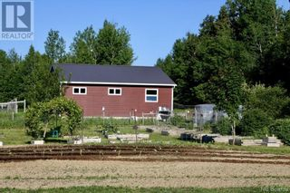 Photo 8: 799 Back Greenfield Road in Summerfield: Agriculture for sale : MLS®# NB060241