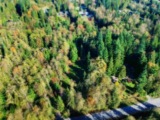 Photo 2: 30255 BRACKLEY Avenue in Mission: Stave Falls Land for sale : MLS®# R2527114
