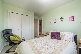Photo 24: 49 Templeson Crescent NE in Calgary: Temple Detached for sale : MLS®# A1089563