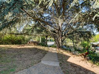 Photo 32: 318 Uganda Ave in VICTORIA: Es Kinsmen Park Half Duplex for sale (Esquimalt)  : MLS®# 822180