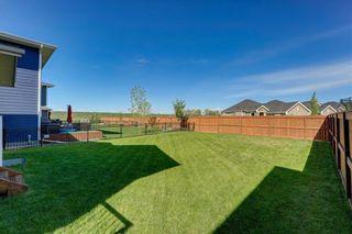 Photo 42: 39 CRANBROOK Lane SE in Calgary: Cranston Detached for sale : MLS®# C4247502