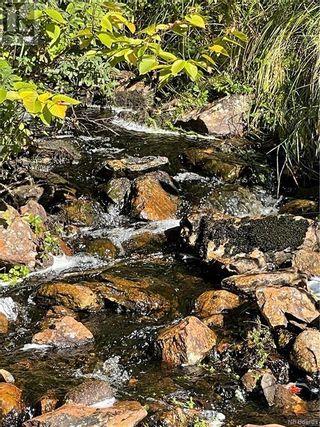 Photo 42: - Saint David Ridge in St. Stephen: Vacant Land for sale : MLS®# NB063465