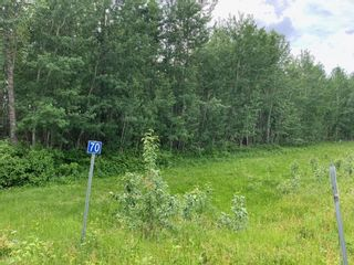 Photo 3: 47411 RR14: Rural Leduc County Rural Land/Vacant Lot for sale : MLS®# E4250921