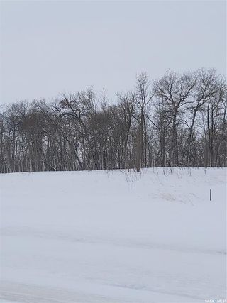 Photo 8: R.M. Of Dundurn #314 lot #2 in Dundurn: Lot/Land for sale (Dundurn Rm No. 314)  : MLS®# SK839263