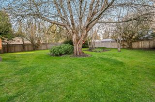 Photo 10: 3820 S Island Hwy in : CR Campbell River South House for sale (Campbell River)  : MLS®# 872934
