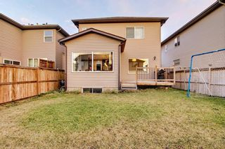 Photo 46: 1100 Brightoncrest Green SE in Calgary: New Brighton Detached for sale : MLS®# A1060195