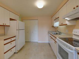 Photo 7: 403 420 Linden Ave in Victoria: Vi Fairfield West Condo for sale : MLS®# 886028