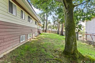 Photo 31: 2415 ADELAIDE Street in Abbotsford: Abbotsford West House for sale : MLS®# R2606943