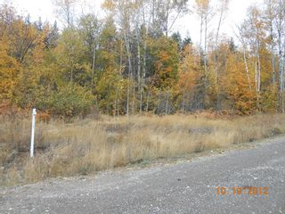 Photo 5: 3 2481 Squilax Anglemont Road in Lee Creek: Land Only for sale : MLS®# 10055686