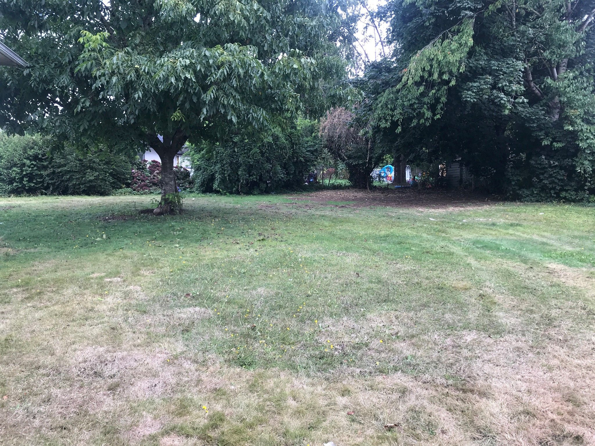 Photo 10: Photos: 2144 McCallum Rd. in Abbotsford: Central Abbotsford House for rent