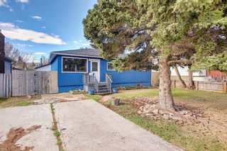 Photo 31: 6415 32 Avenue NW in Calgary: Bowness Detached for sale : MLS®# A1099348
