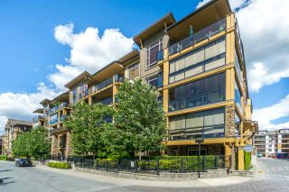 """Photo 1: 505 8258 207A Street in Langley: Willoughby Heights Condo for sale in """"Yorkson Creek - Walnut Ridge 3"""" : MLS®# R2299801"""