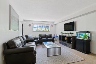 """Photo 6: 121 12101 80 Avenue in Surrey: Queen Mary Park Surrey Condo for sale in """"SURREY TOWN MANOR"""" : MLS®# R2619879"""