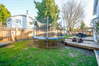 Photo 35: 21071 92 Avenue in Langley: Walnut Grove House for sale : MLS®# R2531110