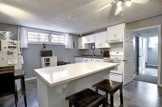 Photo 17: 7223 91 Avenue in Edmonton: Zone 18 House for sale : MLS®# E4247250