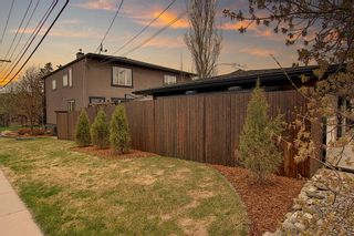Photo 9: 4539 17 Avenue NW in Calgary: Montgomery Semi Detached for sale : MLS®# A1099334