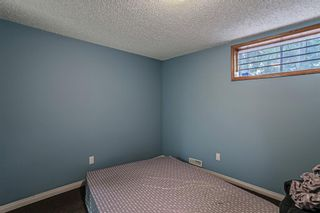 Photo 12: 8304 43 Avenue NW in Calgary: Bowness Detached for sale : MLS®# A1093020