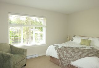 Photo 17: 14377 60th Avenue in Blume: Sullivan Station Home for sale ()  : MLS®#  F1441548