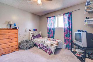 Photo 23: 9703 101A Street: Fort Saskatchewan House for sale : MLS®# E4240196