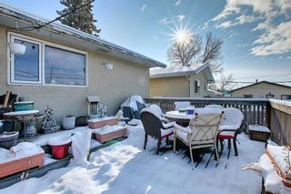 Photo 10: 67 Penmeadows Place SE in Calgary: Penbrooke Meadows Detached for sale : MLS®# A1066670