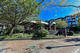 Photo 19: 340 10838 CITY PARKWAY in Surrey: Whalley Condo for sale (North Surrey)  : MLS®# R2209357